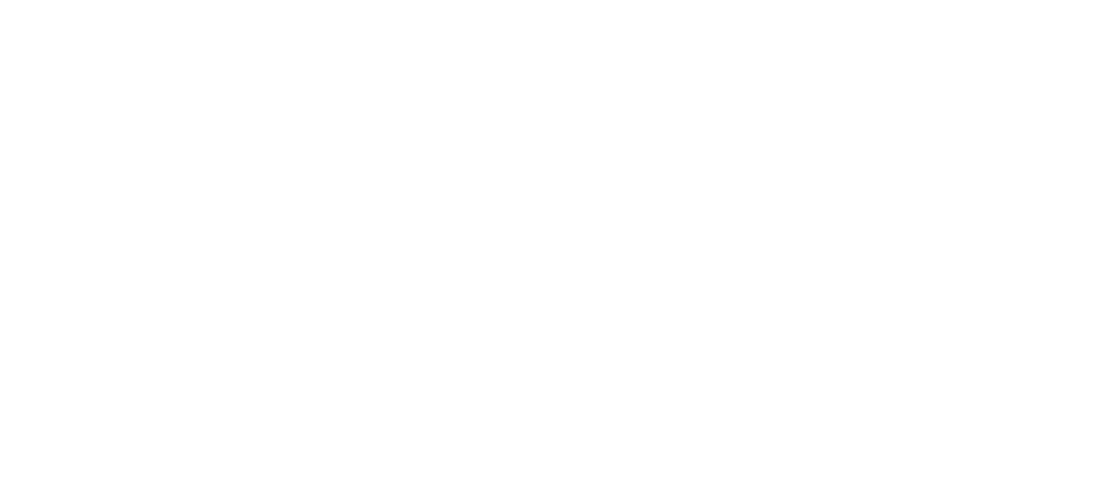 Saint Paul Downtown Alliance